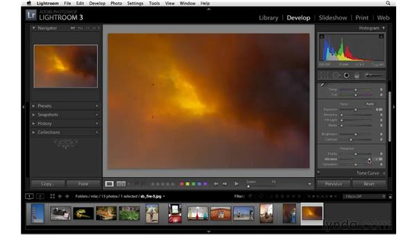 Creative uses of vibrance and saturation: Lightroom 3 Essential Training