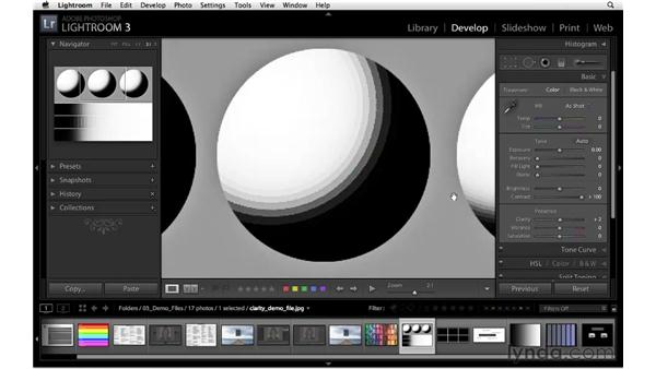 Understanding clarity: Lightroom 3 Essential Training
