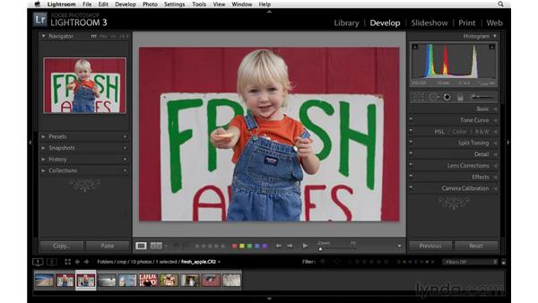 Cropping an image: Lightroom 3 Essential Training
