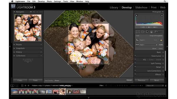 Changing the aspect ratio of an image: Lightroom 3 Essential Training