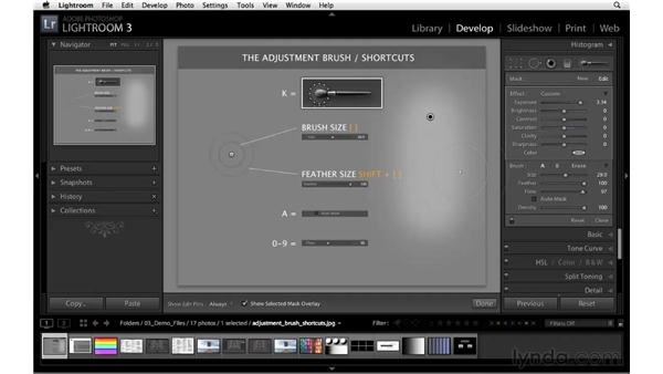 Essential Adjustment Brush shortcuts: Lightroom 3 Essential Training
