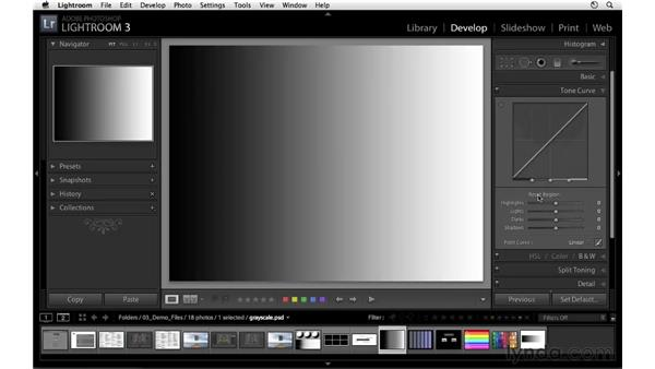 Demystifying the tone curve controls: Lightroom 3 Essential Training