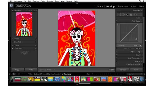 Increasing contrast and color with the tone curve controls: Lightroom 3 Essential Training