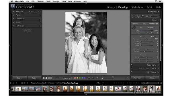 Introducing black-and-white conversion: Lightroom 3 Essential Training