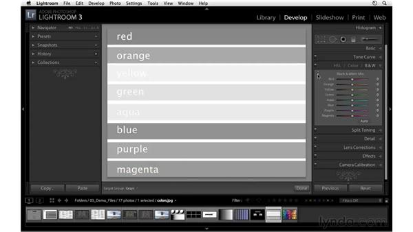 Understanding Black & White Mix : Lightroom 3 Essential Training