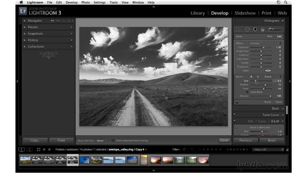 Enhancing black-and-white images with the Adjustment Brush: Lightroom 3 Essential Training