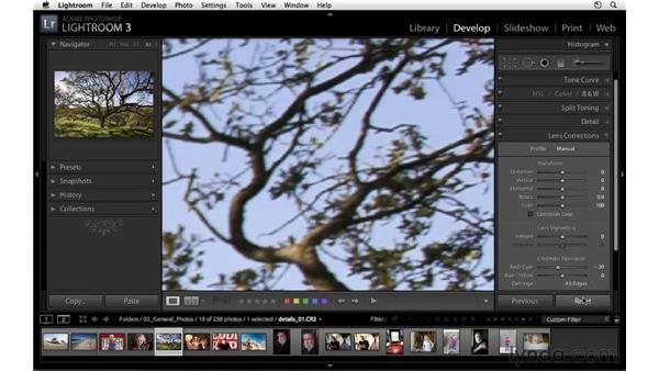 Removing chromatic aberration: Lightroom 3 Essential Training