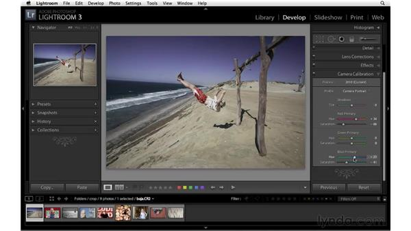 Creative color with Camera Calibration: Lightroom 3 Essential Training