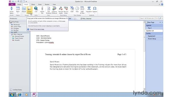 Adding screen clippings: OneNote 2010 Essential Training