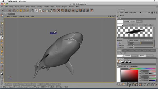 Applying color to the shark using BodyPaint: CINEMA 4D: Designing a Promo