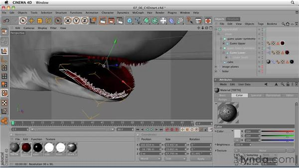 Texturing the teeth and gums: CINEMA 4D: Designing a Promo