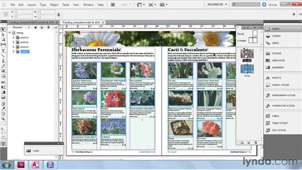 Importing XML into the completed product sheet: InDesign CS5: Dynamic Publishing Workflows in XML