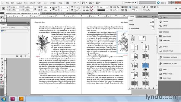 Setting up your file for XML: InDesign CS5: Dynamic Publishing Workflows in XML