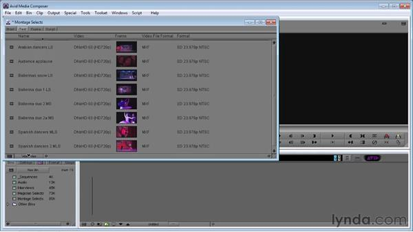Setting up and organizing a project: Avid Media Composer 5 Essential Training