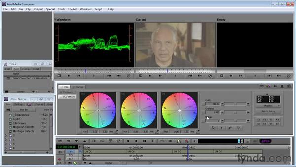 Using the Y-Waveform monitor to set whites and blacks: Avid Media Composer 5 Essential Training