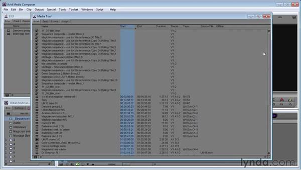 Understanding the Media tool: Avid Media Composer 5 Essential Training