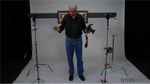 Using two flashes on light stands to eliminate reflections : Photo Assignment: Off-Camera Flash