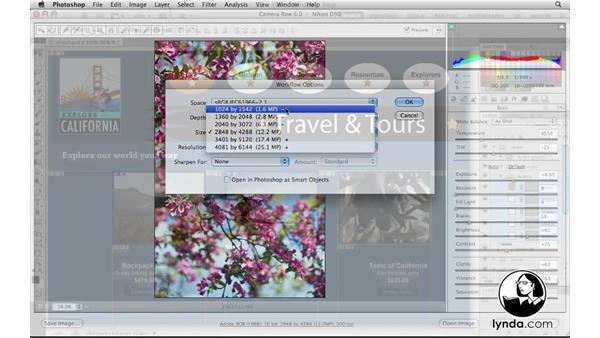 Welcome: Photoshop CS5 for the Web