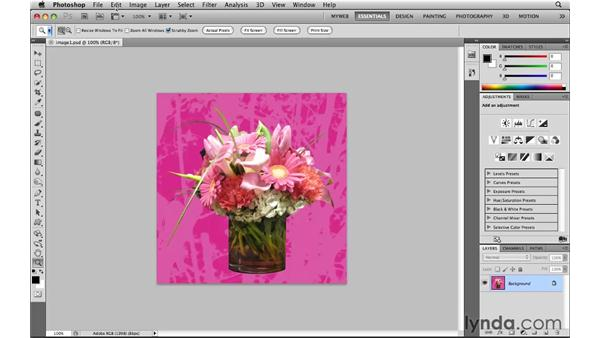 Color managing web images: Photoshop CS5 for the Web
