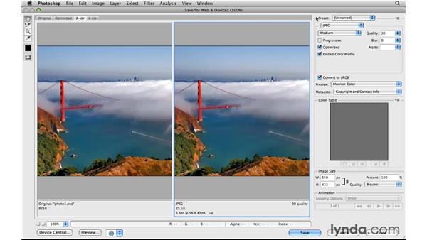 Touring the Save for Web window: Photoshop CS5 for the Web