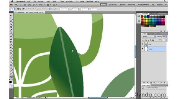 Understanding web graphic transparency: Photoshop CS5 for the Web