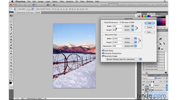 Resizing a copy for the web: Photoshop CS5 for the Web