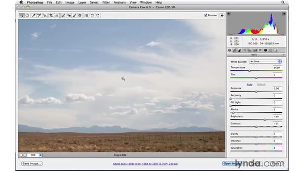 Spotting and cleanup : Photoshop CS5: Landscape Photography