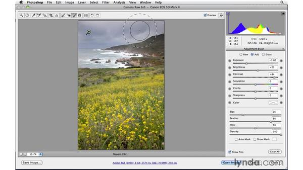 Performing localized edits with the Adjustment brush : Photoshop CS5: Landscape Photography