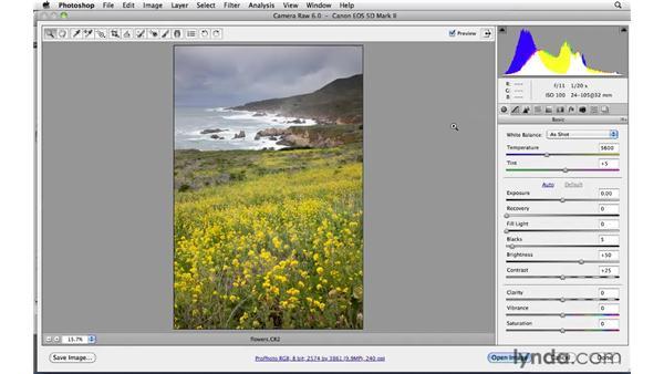 Exiting Camera Raw: Photoshop CS5: Landscape Photography
