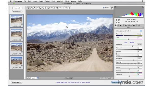 Preparing to stitch: Photoshop CS5: Landscape Photography