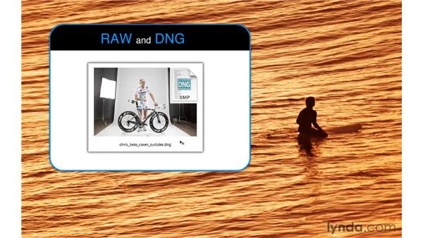 Choosing a format: RAW or DNG: Photoshop CS5: Portrait Retouching