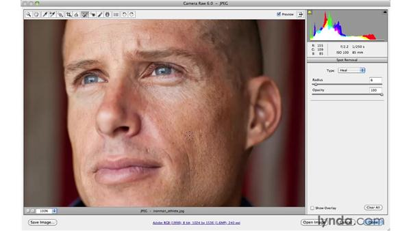 Using the Spot Removal tool: Photoshop CS5: Portrait Retouching