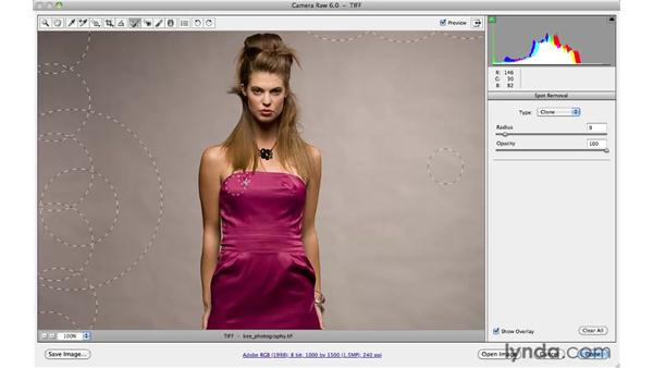 Reducing wrinkles in a Camera Raw workflow: Photoshop CS5: Portrait Retouching