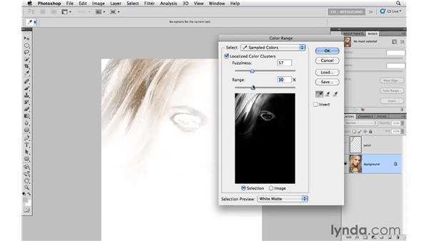 Covering hair discoloration: Photoshop CS5: Portrait Retouching