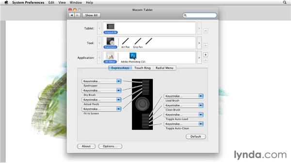 Assigning TouchRing functions: Photoshop CS5: Painting with the Mixer Brush