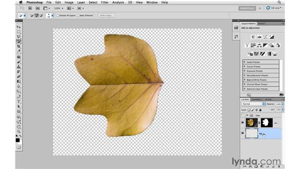 Removing an object from its background: Photoshop CS5: Creative Effects