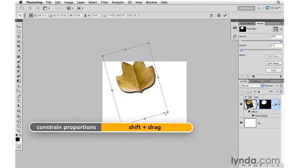 Creating and modifying a shadow: Photoshop CS5: Creative Effects