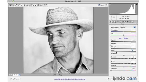 Adding grain with Adobe Camera Raw: Photoshop CS5: Creative Effects