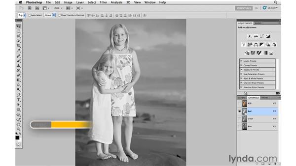 Adding grain with the Film Grain filter: Photoshop CS5: Creative Effects