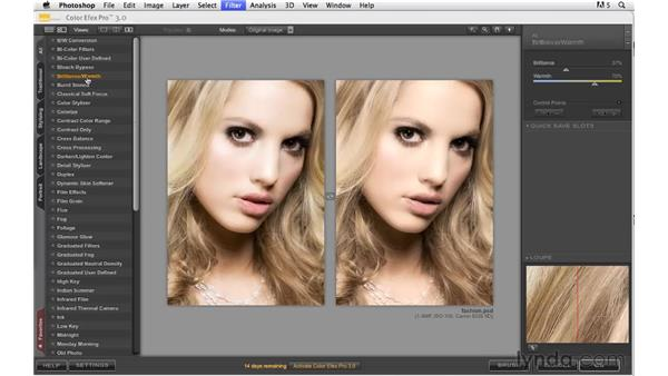 Actualizing your vision with Nik Color Efex Pro: Photoshop CS5: Creative Effects