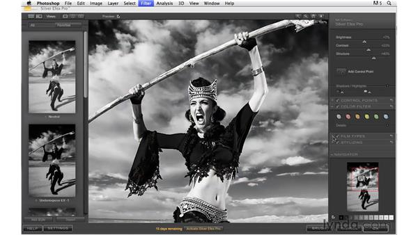 Converting to black and white with Nik Silver Efex Pro: Photoshop CS5: Creative Effects