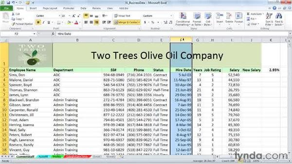 Exploring keystroke shortcuts: Excel 2010: Working with Dates and Times