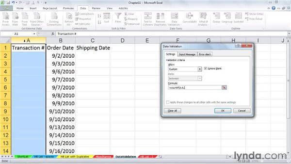 Ensuring unique entries: Excel 2010 Power Shortcuts