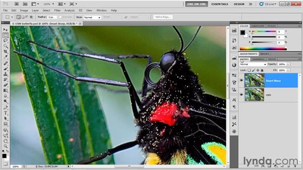 Unsharp Mask vs. Smart Sharpen: Photoshop CS5 One-on-One: Advanced