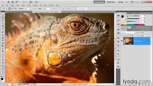 The More Accurate checkbox: Photoshop CS5 One-on-One: Advanced