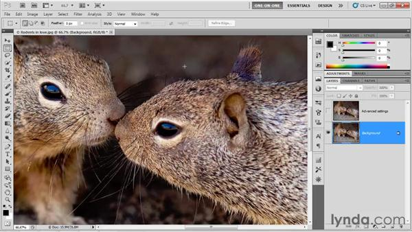 Saving your Smart Filter settings: Photoshop CS5 One-on-One: Advanced