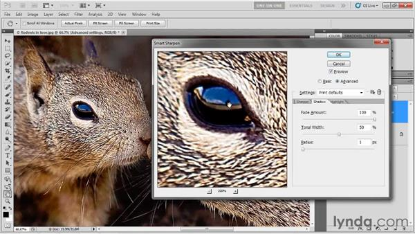 The Advanced sharpening settings: Photoshop CS5 One-on-One: Advanced