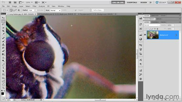 Color vs. luminance noise: Photoshop CS5 One-on-One: Advanced