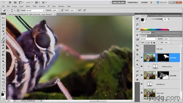 Masking a layer of Lens Blur: Photoshop CS5 One-on-One: Advanced