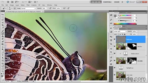 Painting away High Pass sharpening: Photoshop CS5 One-on-One: Advanced